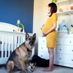 A Husband Made an Amazing Timelapse of His Pregnant Wife. But the Dogs Stole the Show.