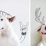 His Wife Left Him Nothing But His Dog. So He Took That Best Friend and Drew This Fun Photo Series.