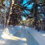 This Ice Skating Trail Allows Canadians to Skate Through the Forest. And It's Breathtaking.