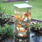 He Flips a Glass Aquarium Upside-Down. Now Keep Your Eyes On the Fish.