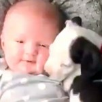 This Video of a Baby and a Puppy Snuggling Together Is Worth Its Million Views.