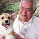 A Bunch of Puppies Invaded a Retirement Home and a Preschool. Now Watch Pure Bliss Ensue.