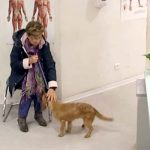 She Takes a Dog to the Shelter. Seconds Later, a Hidden Camera Records the Unthinkable.