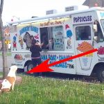 An Ice Cream Truck Pulls Up. Now Keep Your Eye On the Pit Bull In Line… Hilarious!
