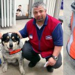 A Man Couldn't Find Work Because of His Service Dog… Until Someone Hired Them Both.