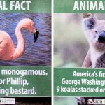 A Comedian Leaves Fake 'Animal Facts' All Over the Los Angeles Zoo. And It's Hilarious to Read.