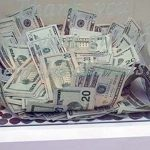 Someone Anonymously Slipped $8,000 Into an Animal Shelter's Donation Box.
