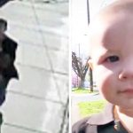 A Kidnapper Tries to Steal a Baby Boy. Now Watch His Big Sister Come Running.