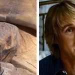 This Tortoise Impersonating Owen Wilson Is All You Need to Watch Today.