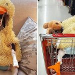 Rescue Goat With Anxiety Only Calms Down In Her Duck Costume.
