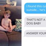 Wife Texts Husband She Brought a Dog Home While the Pic Shows a Coyote, And He Seriously Freaks Out.