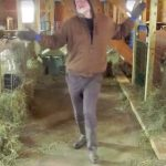 This Farmer's Viral Barn Dance Is Exactly What America Needs Right Now.