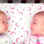Identical twin girls see each other for first time, have a priceless conversation.