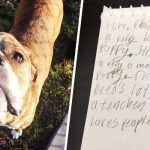 Dog arrives at shelter with letter from kid who loved him.