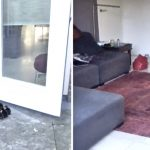 Mama sneaks her ducklings into the house, then homeowner trails behind with a camera.