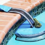 Wildlife biologist's clever invention will keep animals from drowning in your pool.