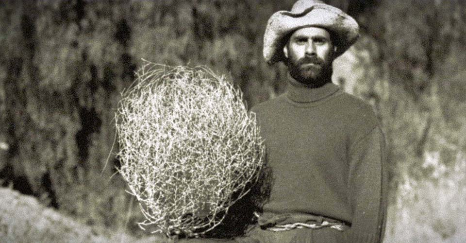 A tumbleweed who doesn't tumble gets bullied for being different. Then, he shows up.