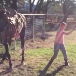 Young girls bust a move to popular song, but the horse steals the show.