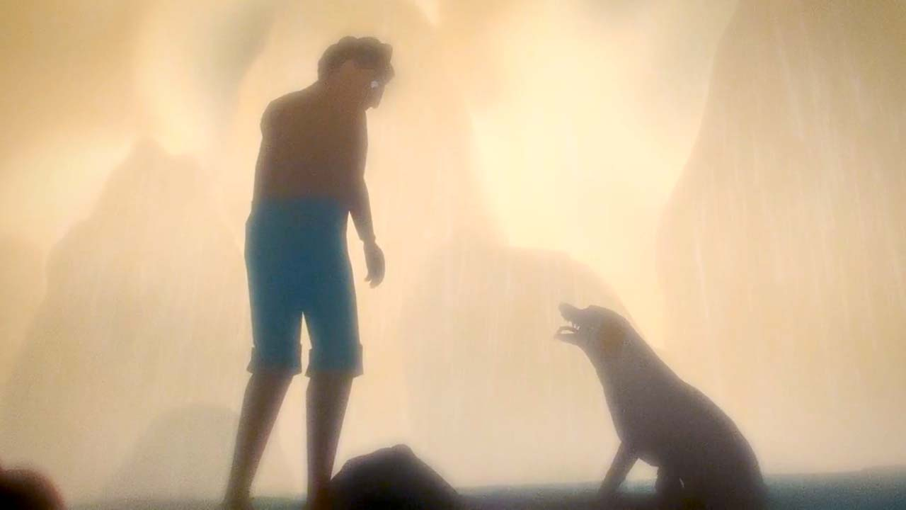 After a plane crashes on a deserted island, a young man and his dog tries to find a way home.